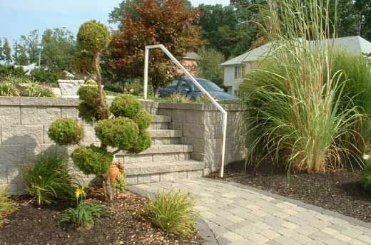 He Called His Long Time Friend Dave Scott, A Skilled And Innovative  Landscape Architect And A Partner At Laurel Oak Garden Center In Nearby  Medford, NJ.